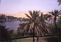 The view from our balcony at the Aswan Oberoi