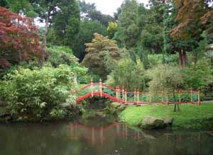 The Chinese garden at Biddulph