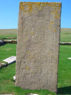 The replica Pictish stone on the Brough of Birsay