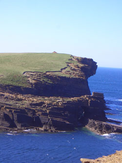 The cliffs at Yesnaby