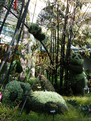 Topiary pandas in the Bellagio conservatory